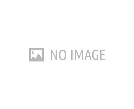 Sorvete Nestlé Bulk Morango 5L